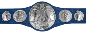 SD Tag Team Champions