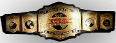 TNA Tag Team Champions